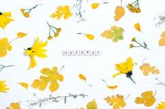 在黄色花和叶子背景的词10月  库存照片