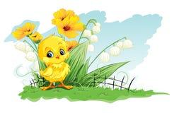 在黄色花和铃兰背景的例证逗人喜爱的鸡  免版税库存照片