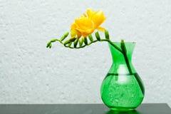 在绿色花瓶的黄色小苍兰 图库摄影