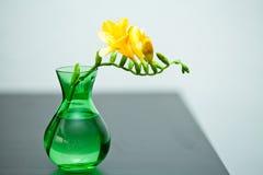 在绿色花瓶的黄色小苍兰 库存图片