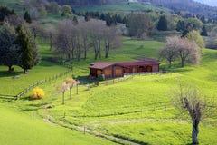 在绿色草坪中间的木瑞士山中的牧人小屋 免版税库存图片
