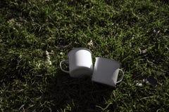 在绿色草坪的两个白色和金属茶杯 被弄脏的背景 3d翻译 库存照片