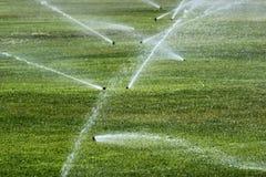 在绿色草坪的喷水隆头 库存图片