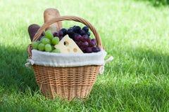 在绿色草坪的室外野餐篮子 免版税库存照片