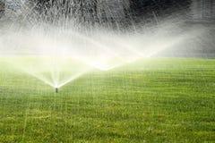 在绿色草坪的庭院喷水隆头 免版税库存图片