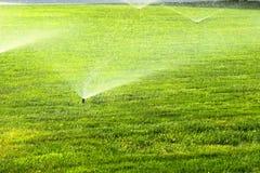 在绿色草坪的庭院喷水隆头 免版税图库摄影