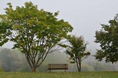 在绿色草坪的长木凳 免版税图库摄影