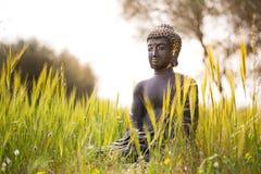 在绿色草甸中间的菩萨小雕象 免版税库存图片
