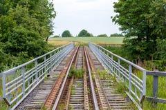 在绿色草甸和树背景的老铁路桥  库存照片