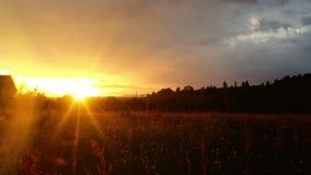 在绿色草甸的不可思议的日落乡下的 影视素材