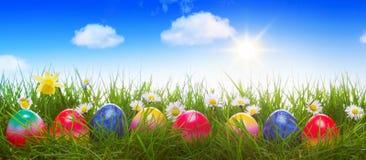 在绿色草甸的五颜六色的复活节彩蛋 免版税库存照片