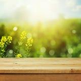 在绿色草甸bokeh背景的空的木甲板桌产品蒙太奇显示的 春天或夏季 库存图片