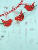 在水色蓝色木背景的现代红色和白色圣诞节木鸟装饰 垂直 免版税库存照片