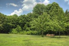 在绿色象草的领域的空的公园长椅 免版税库存照片