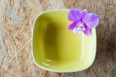 在黄色陶瓷的紫色兰花在木头 免版税库存图片