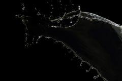 在黑色隔绝的清楚的水飞溅 免版税库存图片