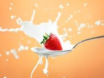 在黄色隔绝的牛奶的草莓飞溅 免版税库存图片