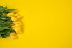 在黄色隔绝的郁金香花束 免版税库存图片