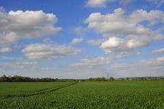 在绿色领域的大多云天空 免版税库存图片