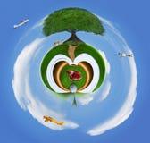 在绿色领域的大树与在蓝天的空中飞机飞行旅行和运输题材的 免版税图库摄影