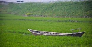 在绿色领域的小船 库存照片