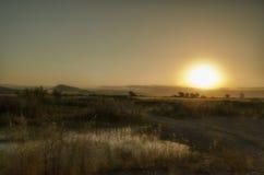 在黄色领域的日落 库存照片
