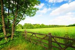 在绿色领域的篱芭 免版税库存照片