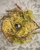 在绿色鸟巢的婚戒 免版税库存照片