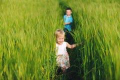 在绿色麦田跑的孩子 图库摄影