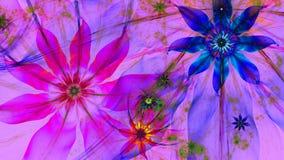 在绿色,桃红色,红色,黄色,蓝色颜色的美好的黑暗的生动的发光的现代花背景 免版税图库摄影