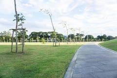 在绿色围场的走道 免版税库存照片