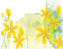 在绿色水彩背景的黄色花传染媒介水彩刷子设计 库存照片