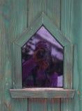 在绿色绿松石木墙壁的小窗口有反射的 免版税库存图片