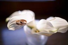 在水芋属的瓣的婚戒 库存图片