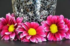 在黑花瓶附近的桃红色花 免版税图库摄影