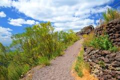 在维苏威火山,意大利的供徒步旅行的小道 图库摄影