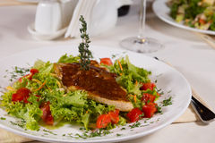 在莴苣和蕃茄的开胃内容丰富的主菜 免版税图库摄影