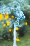 在绿草的一盏抽烟的老煤油灯 库存图片
