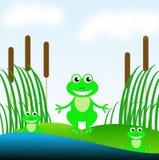 在绿草的三只可笑的池蛙在池塘 皇族释放例证