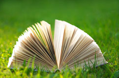 在绿草的书 免版税库存图片