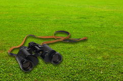 在绿草的双筒望远镜 图库摄影