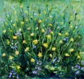 在绿草的夏天五颜六色的花 库存照片