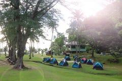 在绿草的帐篷在海滩露营地附近 库存照片