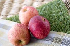 在绿草的新鲜的苹果 图库摄影