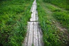 在绿草的木道路 免版税库存照片