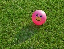 在绿草的桃红色兴高采烈的球 免版税库存照片
