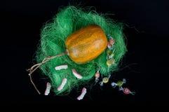 在绿草的橙色南瓜用不同的甜点 免版税库存照片