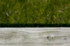 在绿草的灰色木板条 图库摄影