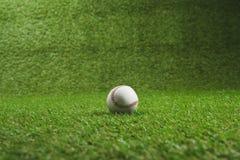 在绿草的白色棒球球 免版税库存图片