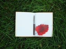 在绿草的笔记本 免版税图库摄影